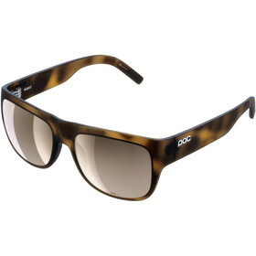 POC Want Gafas, tortoise brown